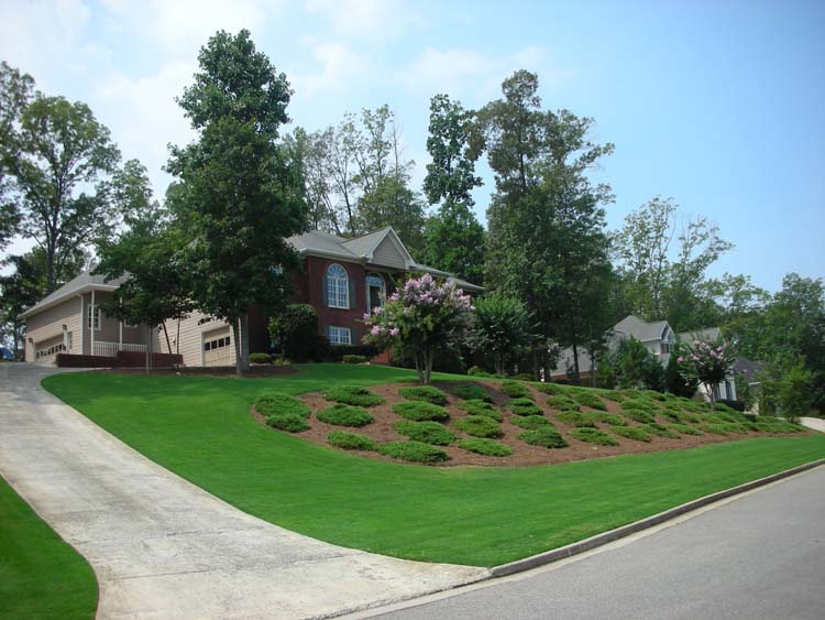 lawn maintenance image