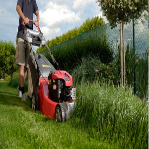 lawn-service-marietta-ga