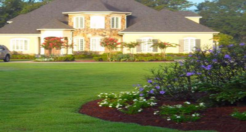 landscape maintenance and lawn care