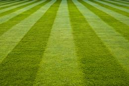 best acworth ga landscaping company