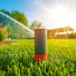 watering your Acworth lawn