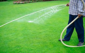 Professional Lawn Care Service Will Keep Your Grass Lush and Green