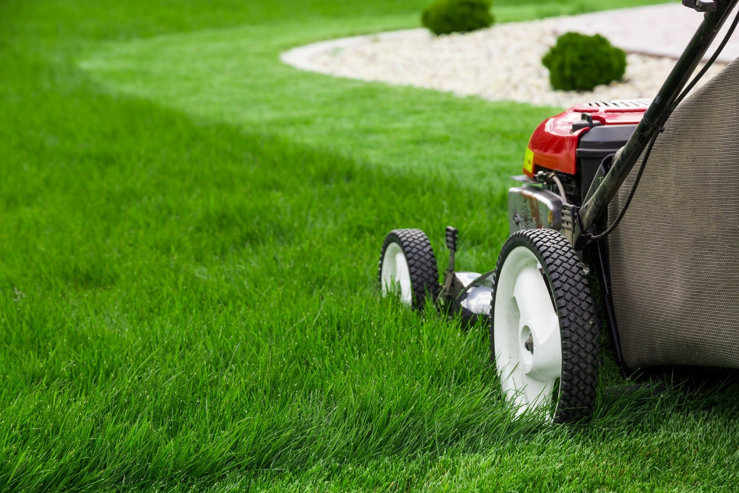 The Reasons That Make Lawn Care Essential to Your Landscaping Needs