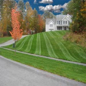 lawn-service-kennesaw-ga