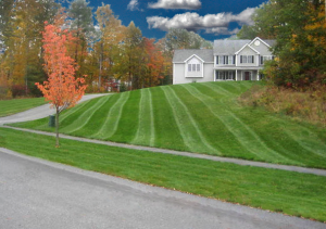 lawn-service-kennesaw-image