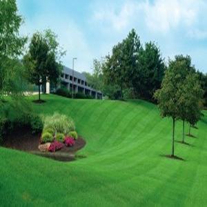 lawn-service-roswell-ga