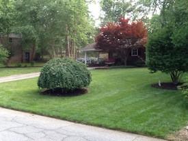Marietta Lawn Care