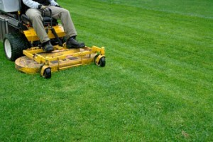 lawn care in Acworth, Georgia