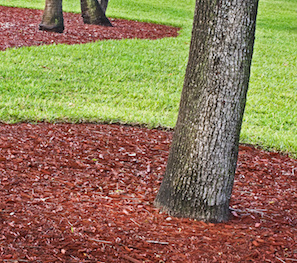 Landscaping beds with Red Mulch
