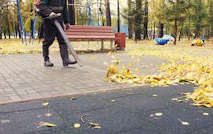 Acworth Lawn Care Leaf Removal
