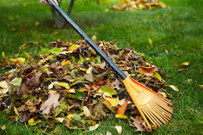 Lawn Care Leaf Raking In Acworth GA