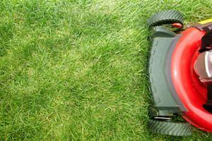 Acworth Lawn Mowing