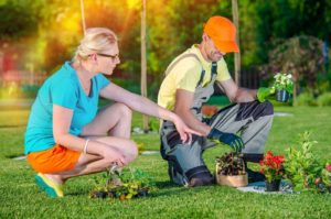 Three Effects of Lawn Aeration a Landscaping Company Will Confirm