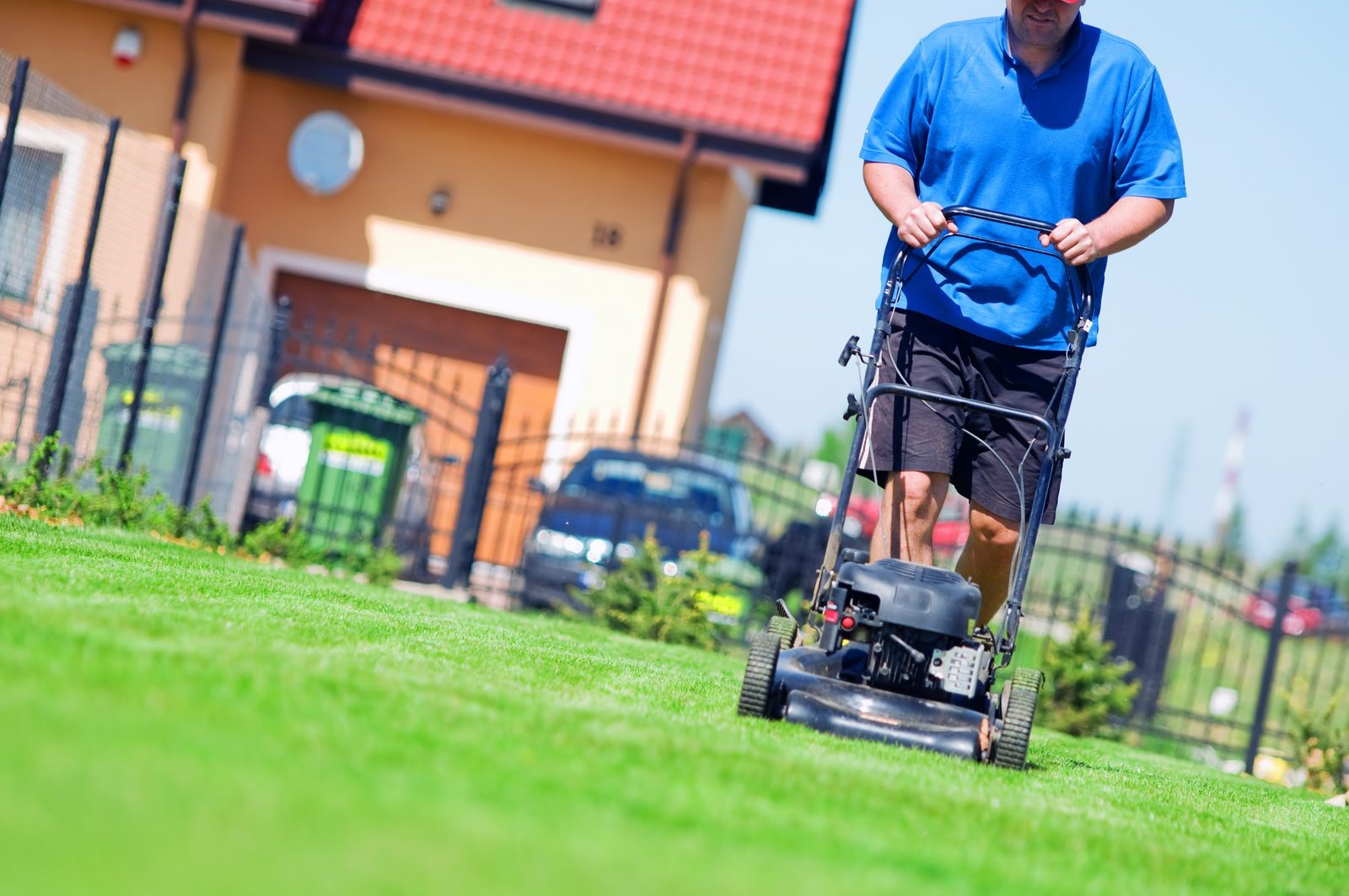 Professional Lawn Care Services Can Properly Maintain Your Landscaping